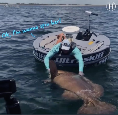 Video: Man Reels in Monstrous Goliath Grouper With Broken Rod