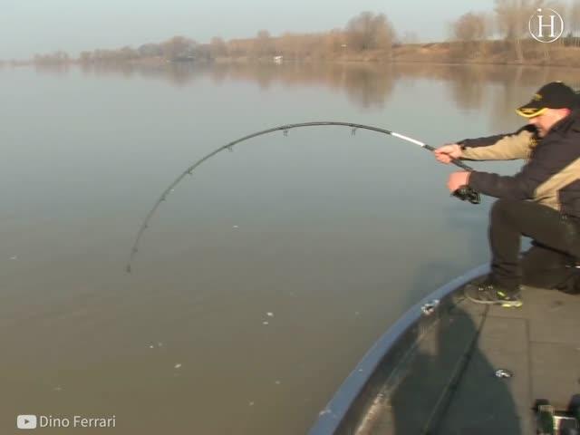 Massive 280-Pound Catch Caught on Tape